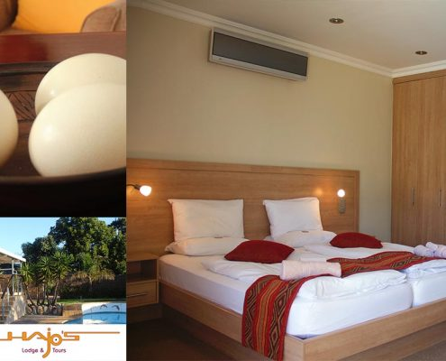 Hajo's Lodge & Tours - Guesthouse Winter Special image