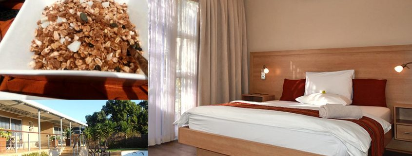 Hajo's Lodge & Tours - Guesthouse Early-Bird Special